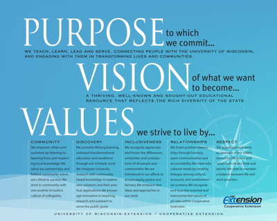 purpose vision values pdf